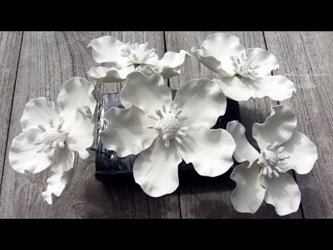 How to make fantasy gum paste flowers youtube how to make fantasy gum paste flowers mightylinksfo