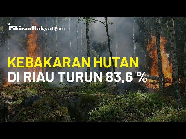 Hingga Oktober 2020 Hutan yang Terbakar di Riau Seluas 1.587 Hektare, Kepala BPBD: Turun 83,6 Persen
