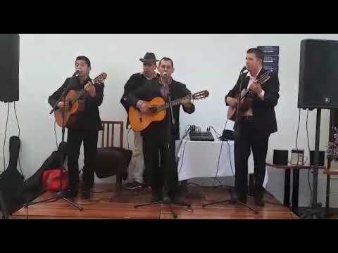 Trío sones y cuerdas (música colombiana y de cuerda)