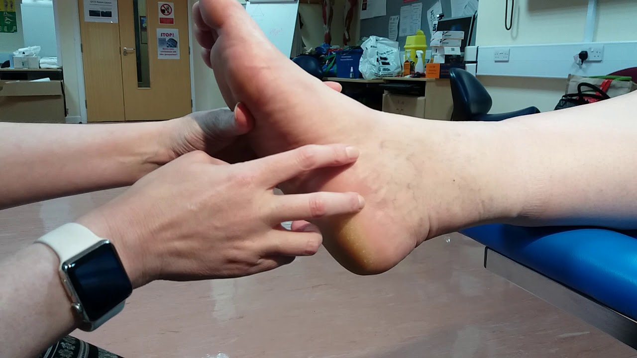 Spring Ligament - YouTube