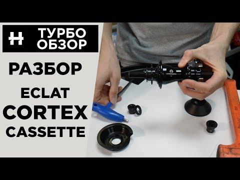 Разбор кассетной втулки Eclat Cortex