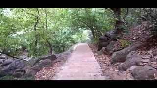 Panchalingeswar, Nilgiri, Chandipur, Kuldiha Forest, Devkund in Orissa. - Part 31