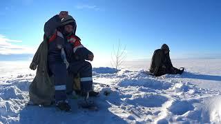 Чудское озеро 1 февраля 2021 Ветвеник РЫБАЛКА СУПЕР