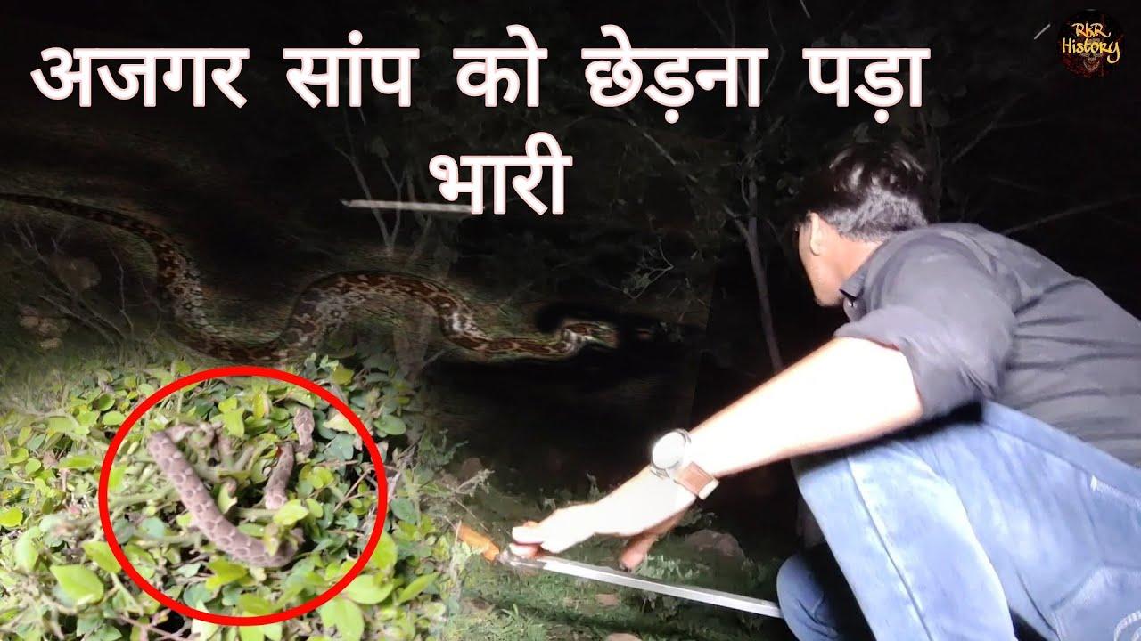 अजगर सांप का खौफनाक आतंक   Ajagar Snake   Haunted Forest   Gone Wrong   RkR History