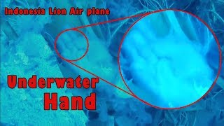 Raw: Indonesia Lion Air plane underwater 🎥 unseen videos 2