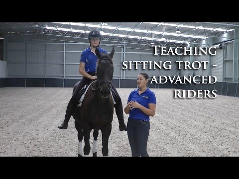 Learning How To Do Extended Trot (Sitting Trot) - Dressage Mastery TV Ep70