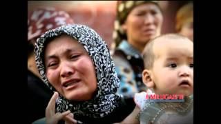 Milli Gazete Sinevizyon.mp4
