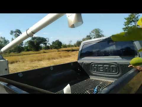 รถเกี่ยวโคโบ้ตาDC70 ทายข้าว