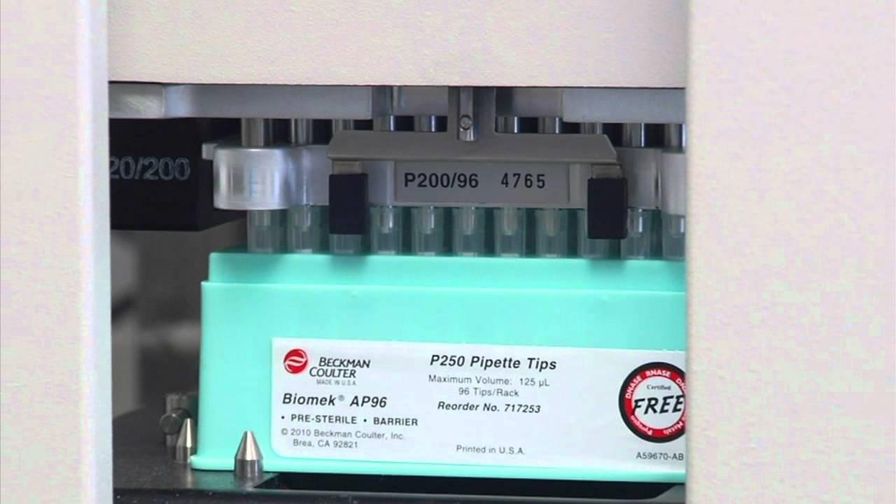 AMPure XP DNA purifications on Biomek liquid handling platforms