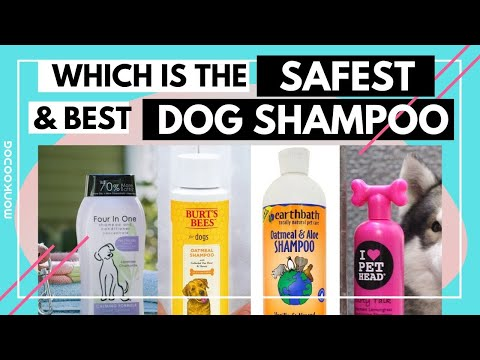 Which Is The Best And Safest Dog Shampoo Of 2020 || Dog Shampoo Review || Monkoodog