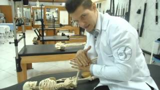Terapia Manual Quadril (Maitland) Clínica de Fisioterapia Dr. Robson Sitta