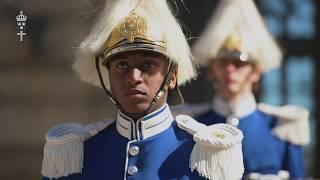 Försvarsmakten firar kungen på säkert sätt Resimi