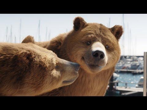 AGI Insurance TVC - Bear