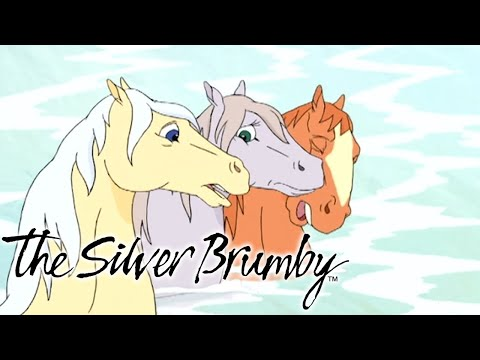 The Silver Brumby - Swimming to Safety | Full Episode | Cartoons For Kids | Cartoons For Children