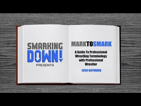 MarkToSmark A Guide to Pro Wrestling Terminology Ep 1