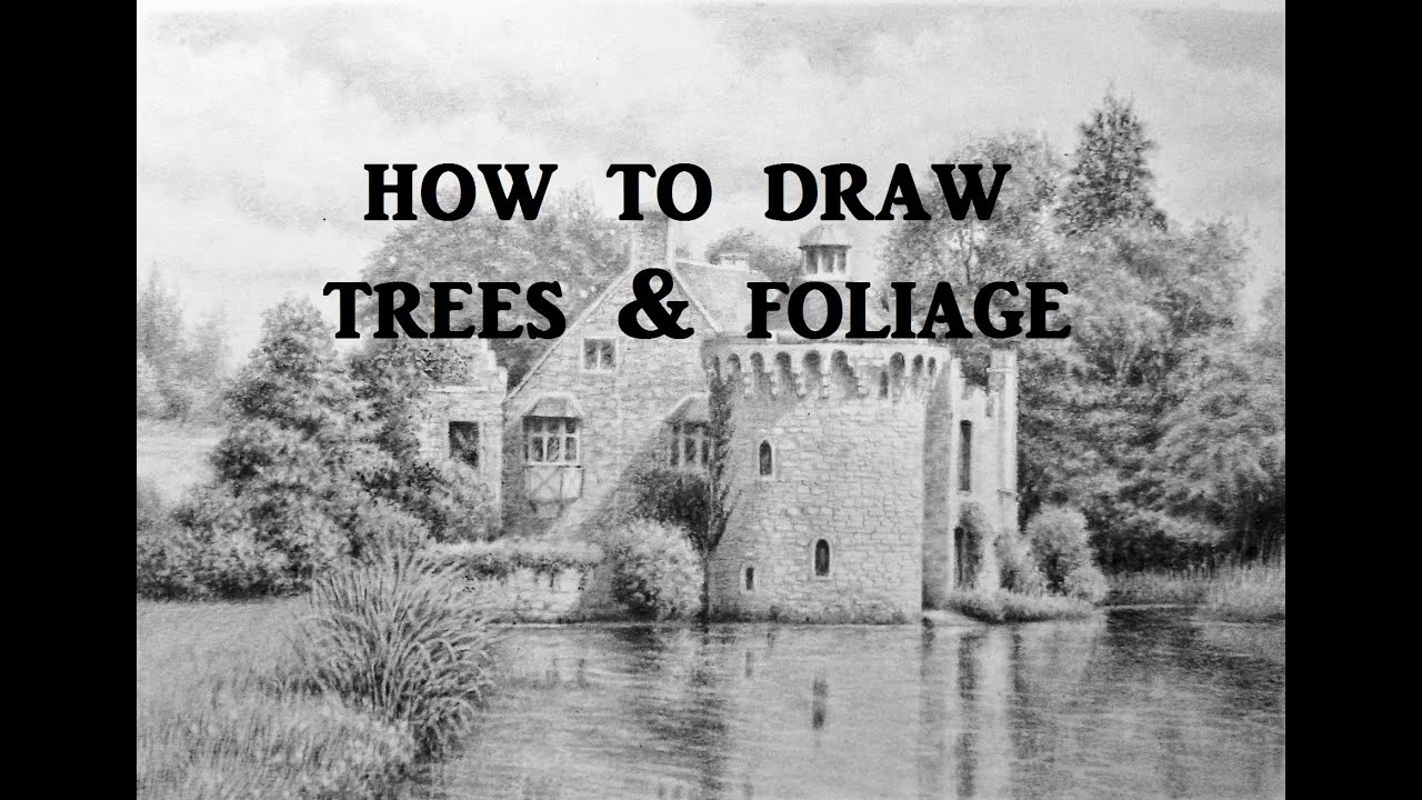How to Draw Landscapes, Trees, Foliage, Graphite Pencil Drawing ...