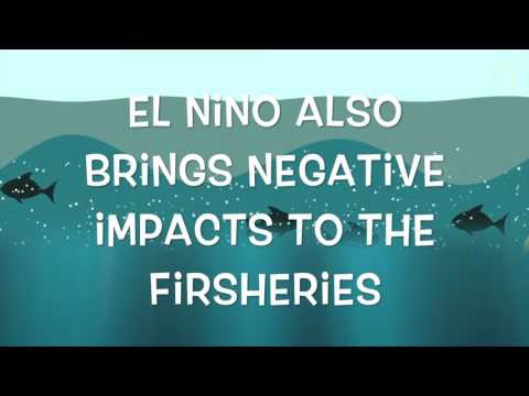 El Nino Ckmh Final Project