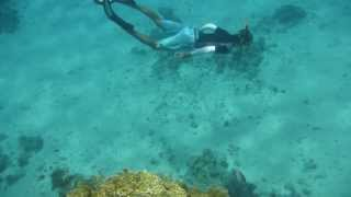 1308.00023 Freediving (Tanja) Thumbnail