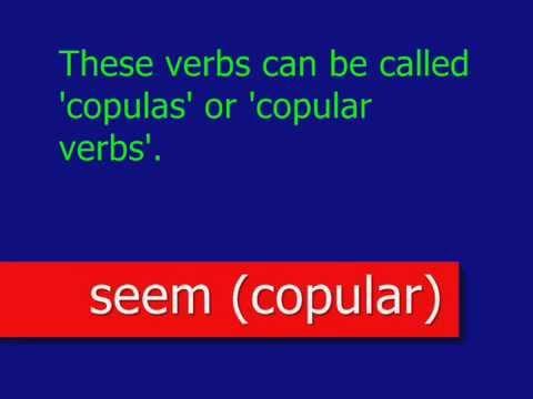 clip01_PEU_art490_SEEM_COPULAR_A01_Bn_En_COPULAR_VERB_SEEM_1