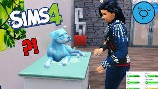PIES Z SIEROCIŃCA ZACHOROWAŁ !  The Sims 4
