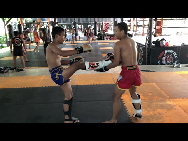 Muay Thai brothers sparring: Saileuat vs Sailohit