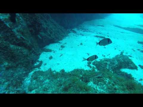 Scuba Diving Barcelona, Spain -  Lloret De Mar