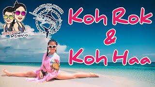 เที่ยว เกาะรอก+เกาะห้า จ.กระบี่ : Koh Rok & Koh Haa Krabi Thailand
