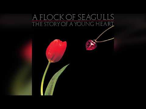 A Flock of Seagulls- The Story of a Young Heart- Full Album
