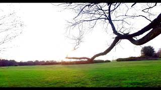 Sutton Coldfield Park 4K