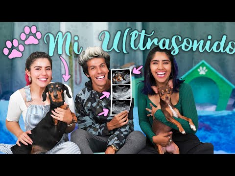 yes,-i'm-pregnant,-my-new-room-|-vlogs-polynesians