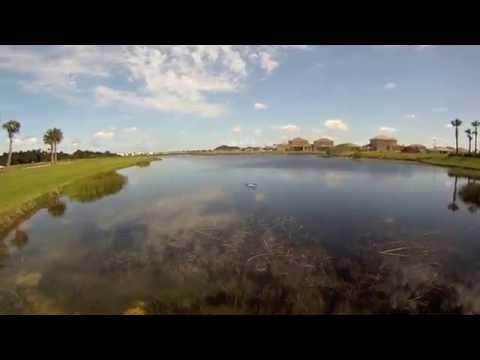 Bass Fishing - Swimming Through Eel Grass