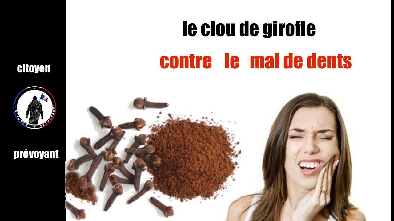 Le Clou De Girofle Un Rem U00e8de Pour Soulager Le Mal De Dents