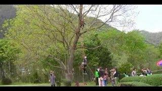 ツリーイングは高い木にかけた専用ロープと、ツリーハーネスと呼んでい...