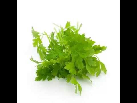Chervil Herb & its health Benefits