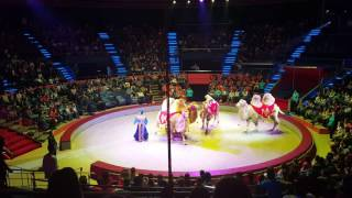 Circul Globus 2016