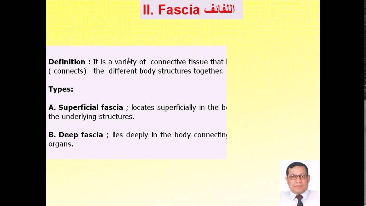 Magdy Said Anatomy Series,An intoduction to human anatomy ...