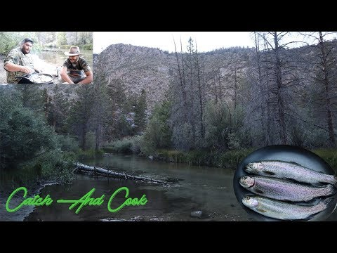 Bishop Creek CA Fishing {Catch & Cook}