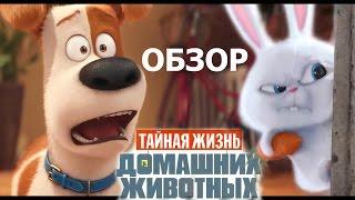 ► ТАЙНАЯ ЖИЗНЬ ДОМАШНИХ ЖИВОТНЫХ / The Secret Life of Pets. ( 2016 ) Полный ОБЗОР мультфильма в HD