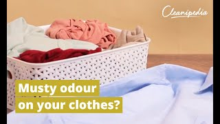 How to remove damp smell from clothes and get rid of musty odours?