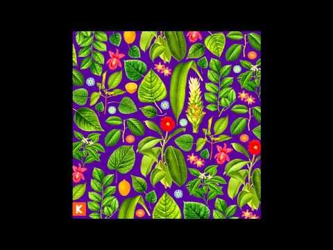 Kings Kaleidoscope - Zion
