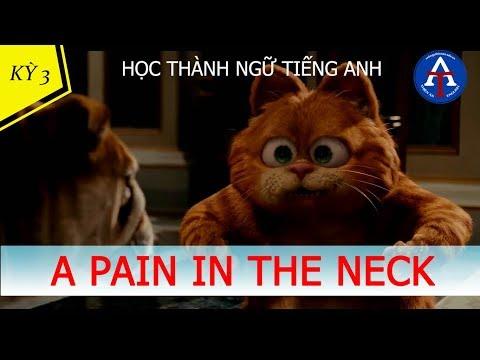 [HỌC IDIOM QUA PHIM] - A Pain In The Neck (Garfield 2)