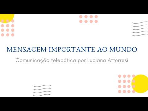 Os fakes news dos fakes news e a LEI DA CENSURA from YouTube · Duration:  19 minutes 44 seconds