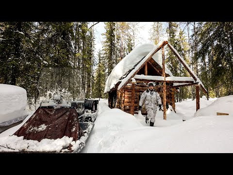 Log Cabin in the Forest Alone in the Wilderness. Forest Film.