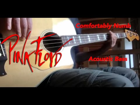 Pink Floyd -  Comfortably Numb -  Acoustic Bass Cover