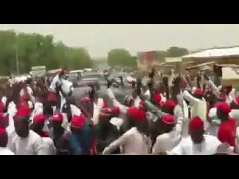 """Download Kwankwaso humbled by """"warm welcome"""" in Daura"""