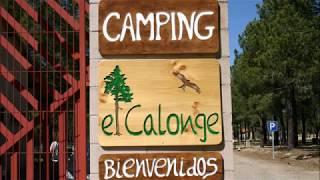 CAMPING EL CALONGE- LASTRAS DE CUELLAR (SEGOVIA)
