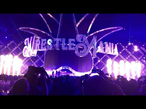 Wrestlemania 34 My View The Undertaker Returns