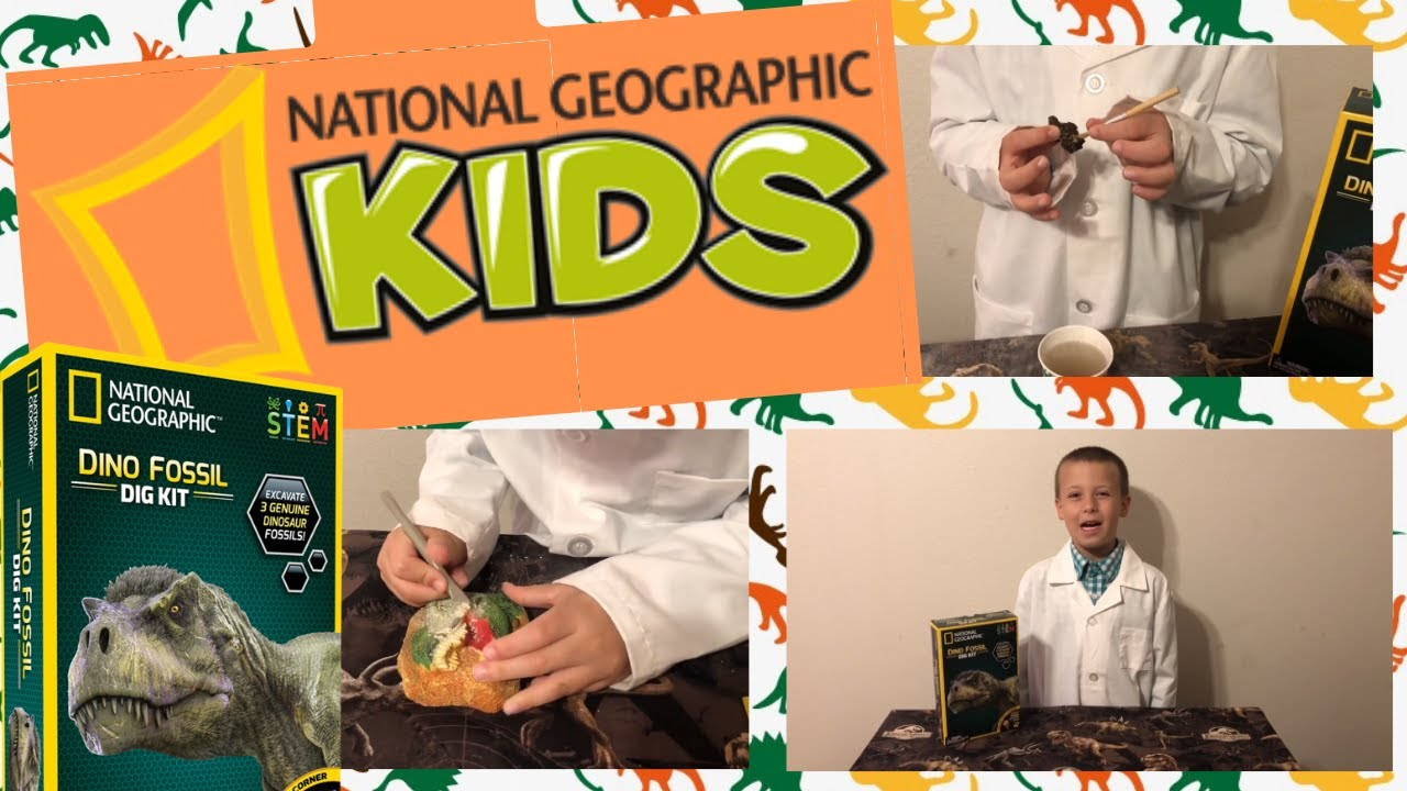 | National Geographic | Dino Fossil Dig Kit