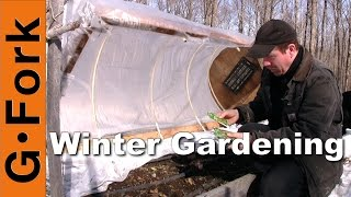 Cold Frame Hoop House #4: Gardenfork.tv