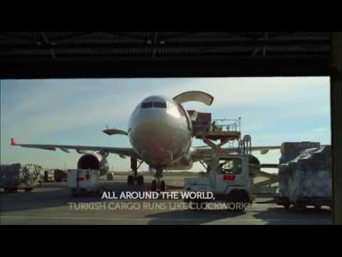 CMS Airlines Representative - Turkish Cargo